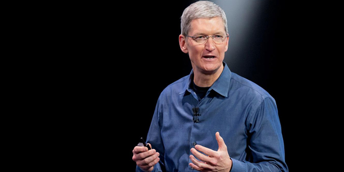 Apple chief pushes for US privacy law to stop